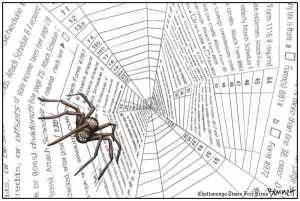 IRS Spider