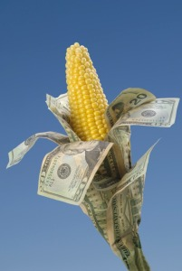 ethanol-corn-money